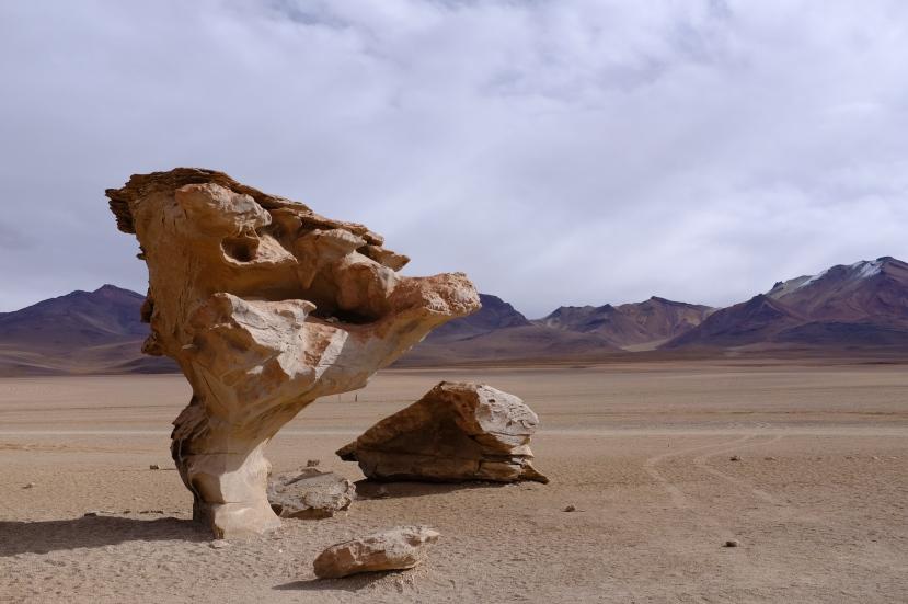 Zkamenělá láva