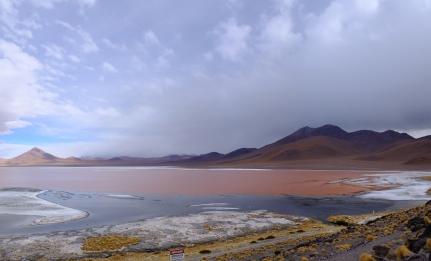 Červeně zbarvená Laguna Colorada